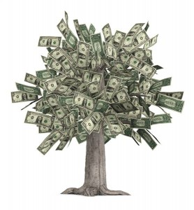 Robert Brauer's The Money Tree Cash System 2.0 Warrior Special Offer Review